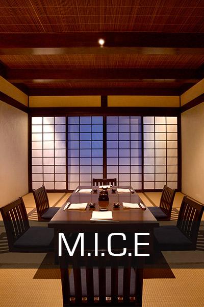 mice-hyatt